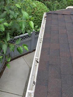 Abbotsford Gutter Cleaning
