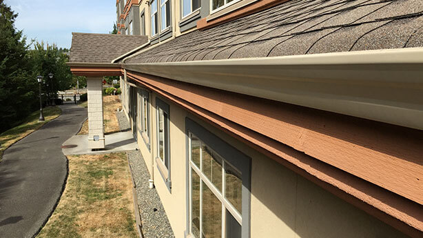 burnaby-gutter-cleaning