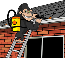 gutter-cleaning.png