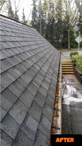 Burnaby Roof Cleaners