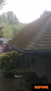 Burnaby Roof Cleaning