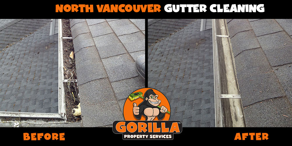 north vancouver gutter cleaning