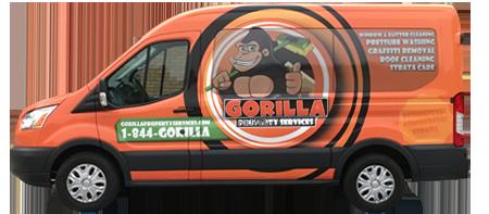 van-gorilla