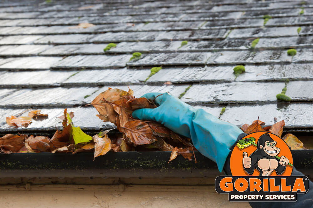 Penticton Gutter Cleaning