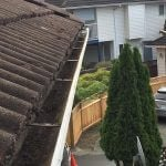 Burnaby Gutter Cleaning