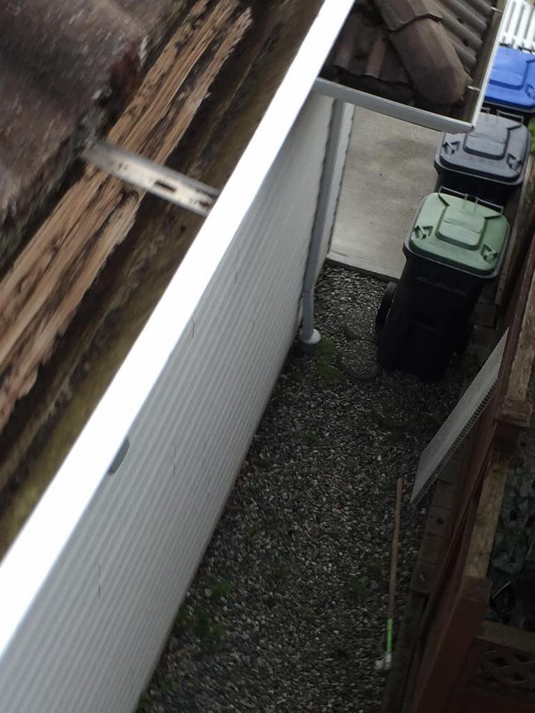 Burnaby Gutter Cleaning - Gorilla Property Services