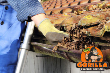 peachland gutter cleaning