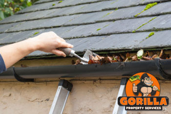 victoria gutter cleaning