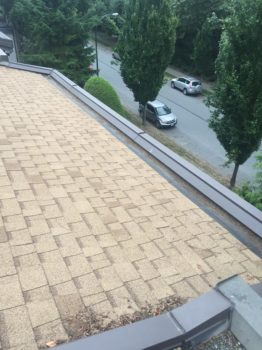 north bay roof cleaning