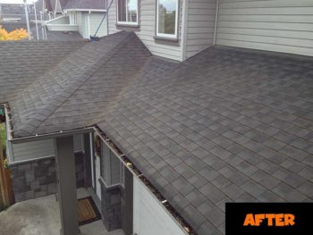 Sudbury Roof Cleaning