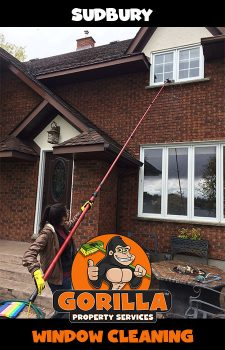 sudbury window cleaning