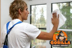 maple ridge window cleaning