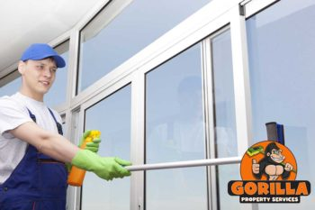 edmonton window cleaning