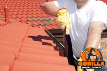 Calgary Roof Cleaning