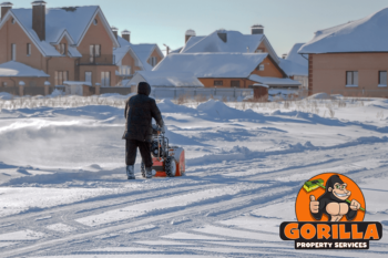 winnipeg snow removal