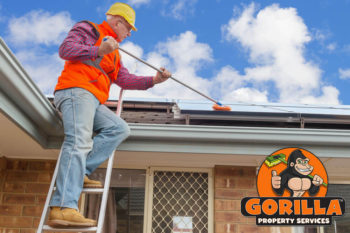 Coquitlam Roof Cleaning