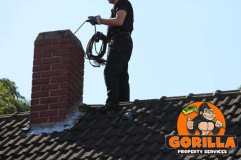 Maple Ridge Roof Cleaning