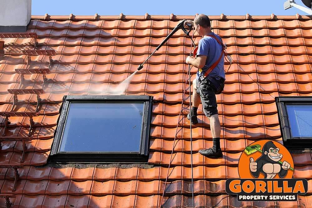 Tsawwassen Roof Cleaning