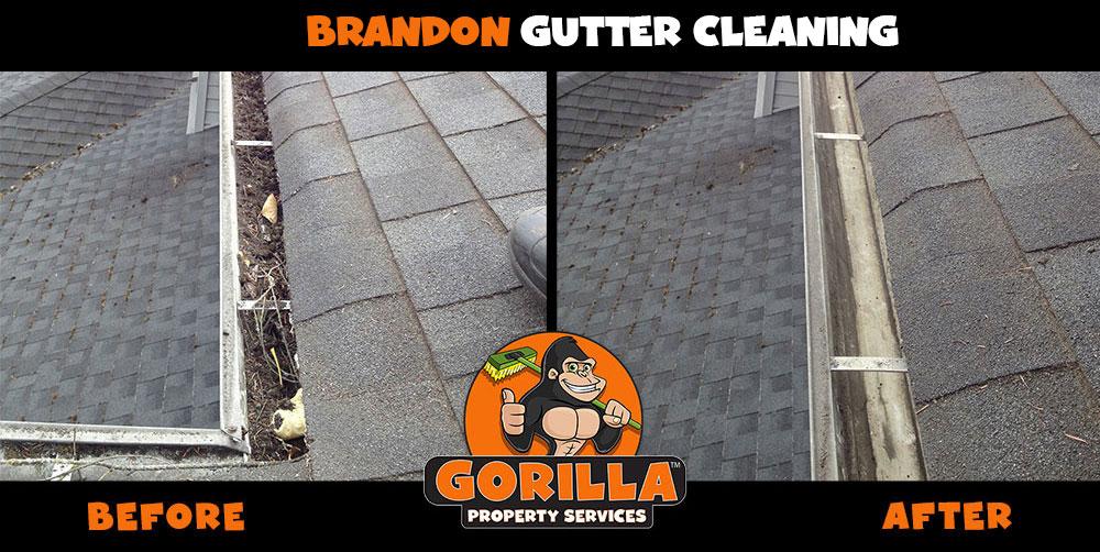 brandon gutter cleaning