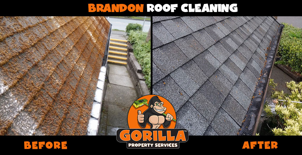 brandon roof cleaning