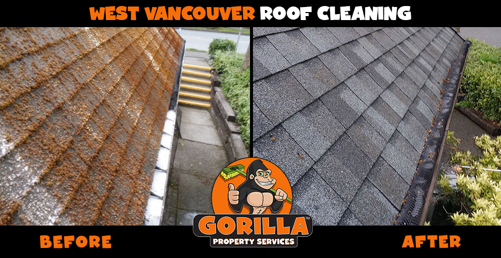 west vancouver roof cleaning