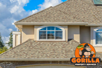 Mississauga Roof Cleaning
