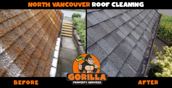 north vancouver roof cleaning