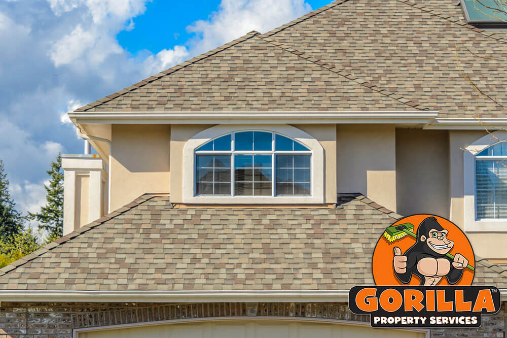 Steinbach Roof Cleaning