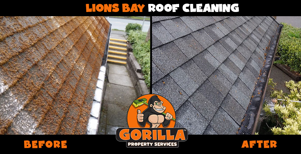 lions bay roof cleaning