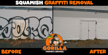 squamish graffiti removal