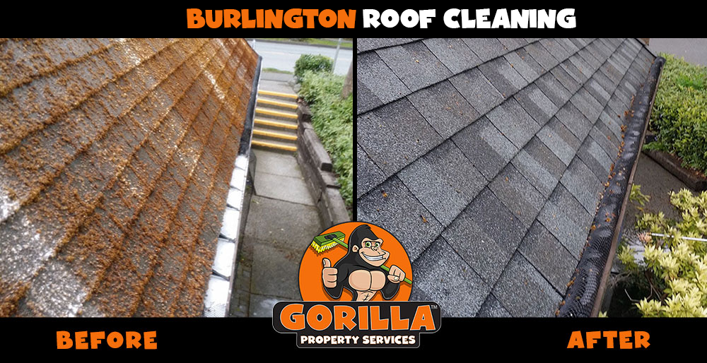 burlington roof cleaning