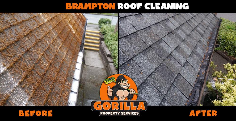 brampton roof cleaning