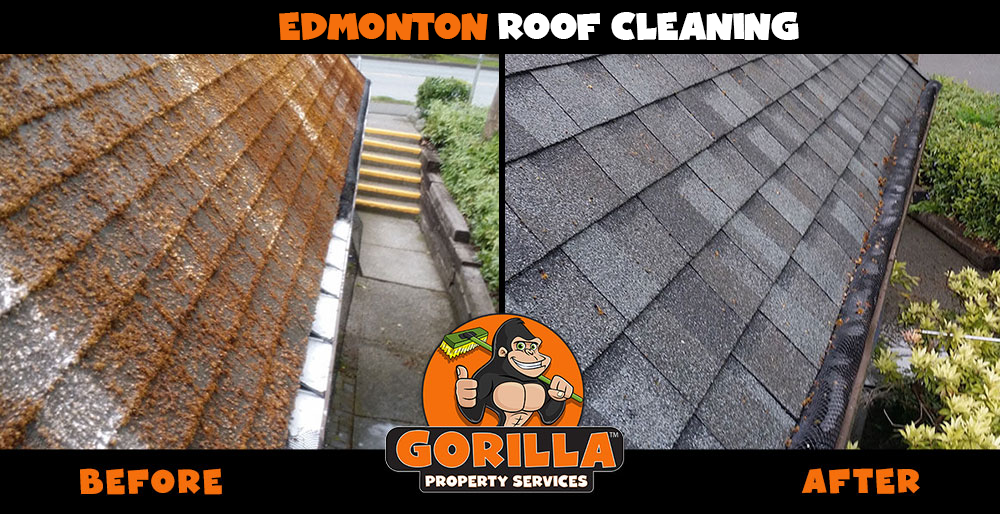 edmonton roof cleaning