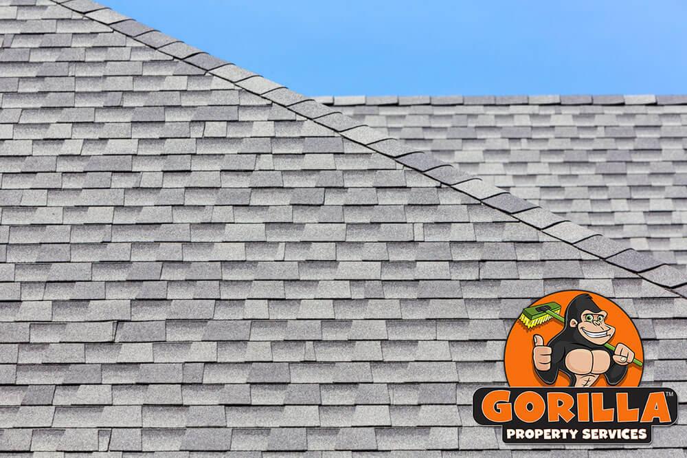 Etobicoke Roof Cleaning