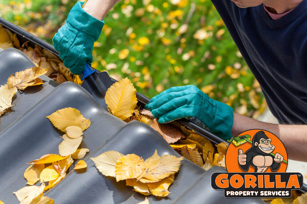 Bedford Gutter Cleaning