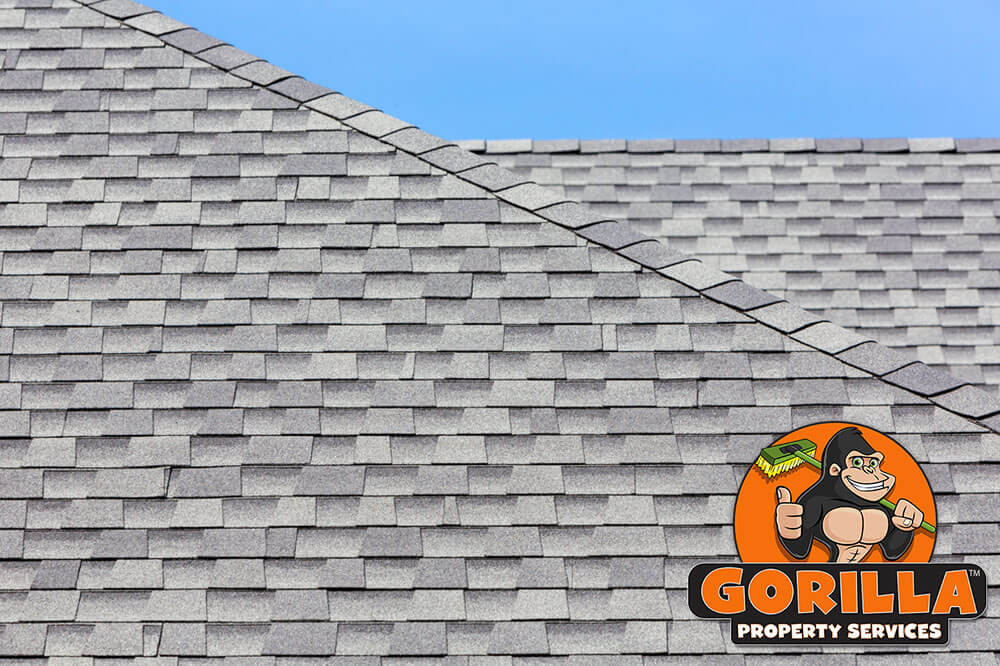 Kitchener Roof Cleaning