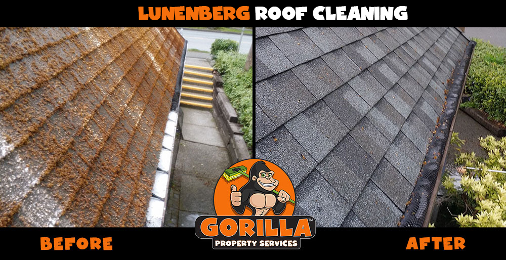 lunenburg roof cleaning