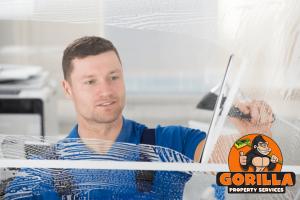 georgetown window cleaning