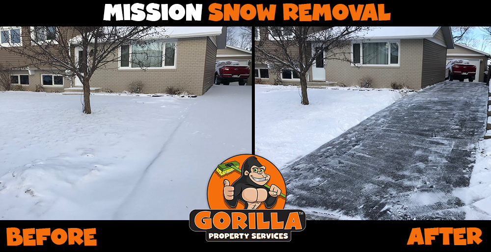 mission snow removal