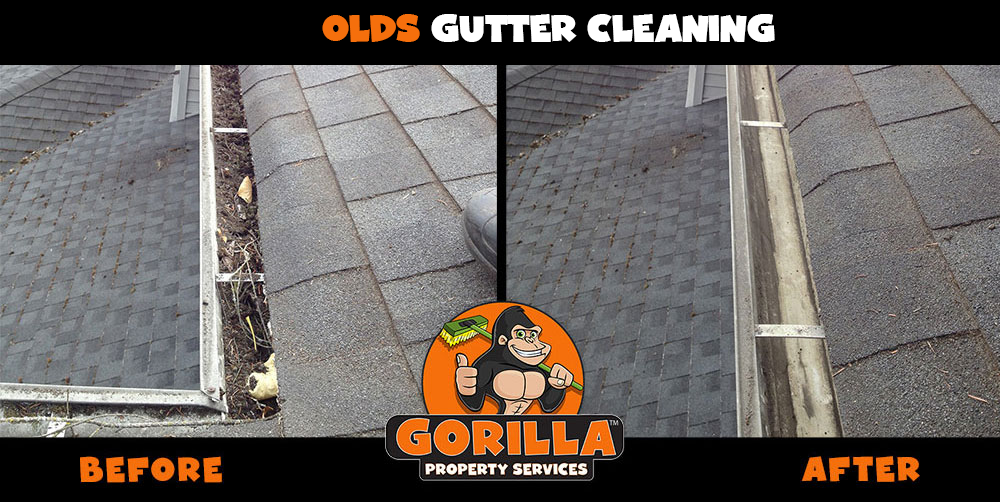 olds gutter cleaning