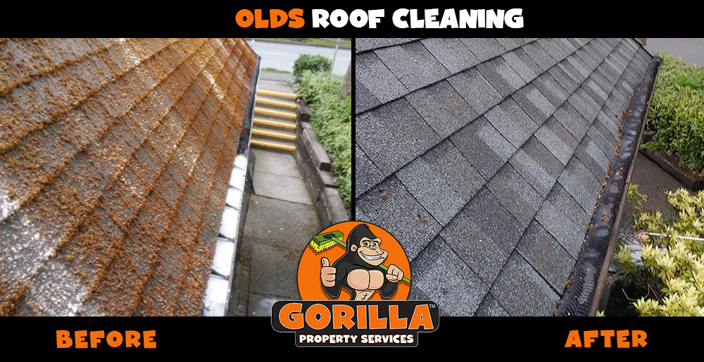 olds roof cleaning