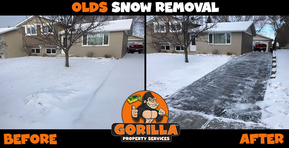 olds snow removal