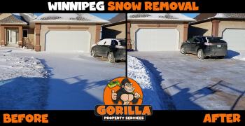 winnipeg snow removal