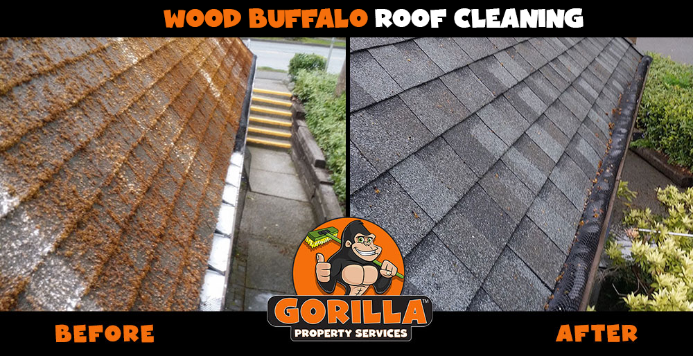 wood buffalo roof cleaning