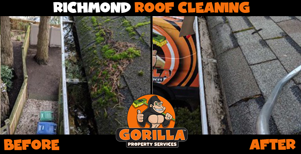 richmond roof cleaning