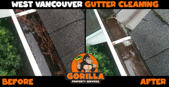 west vancouver gutter cleaning