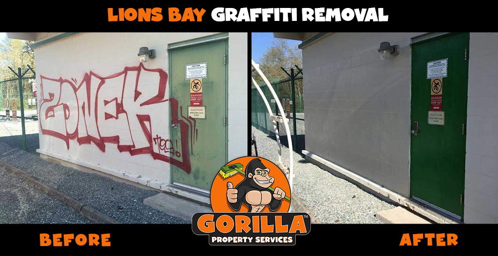 lions bay graffiti removal