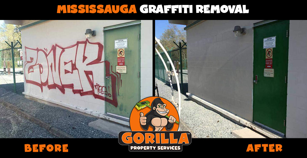 mississauga graffiti removal
