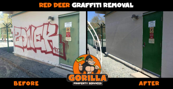 red deer graffiti removal