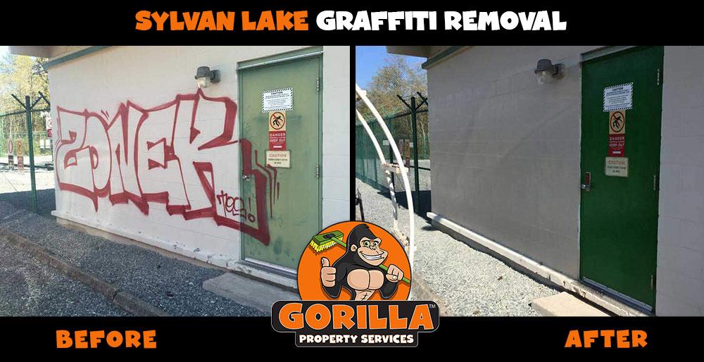 sylvan lake graffiti removal